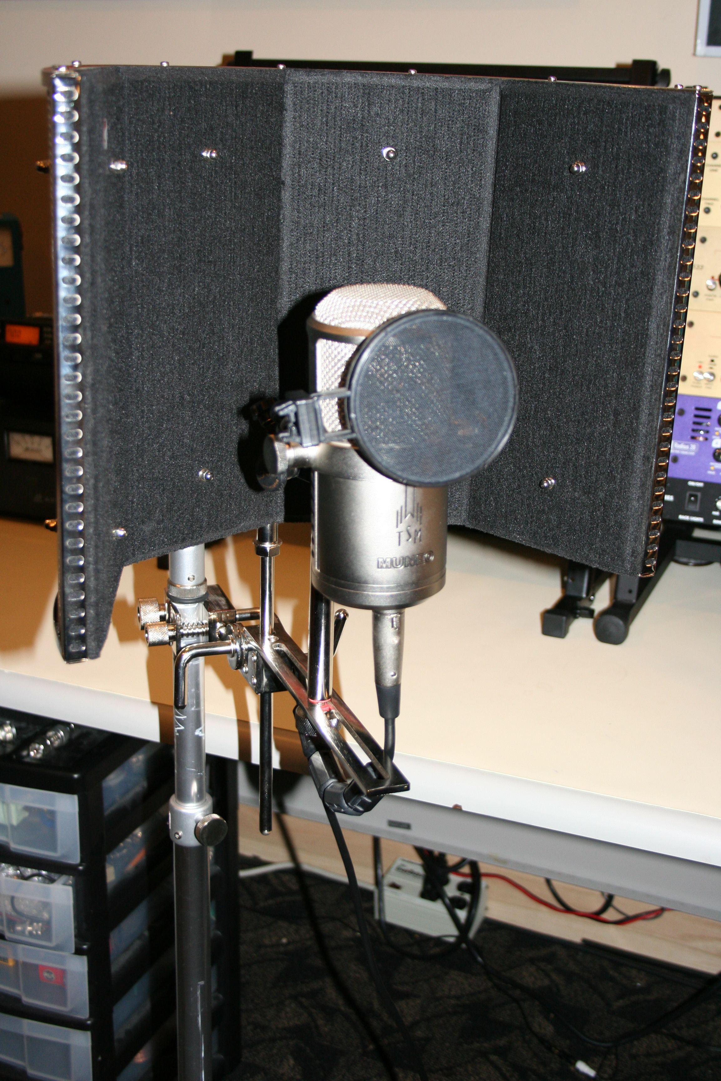 Here's the TSM MUNEO Dual Tube Microphone!!!!